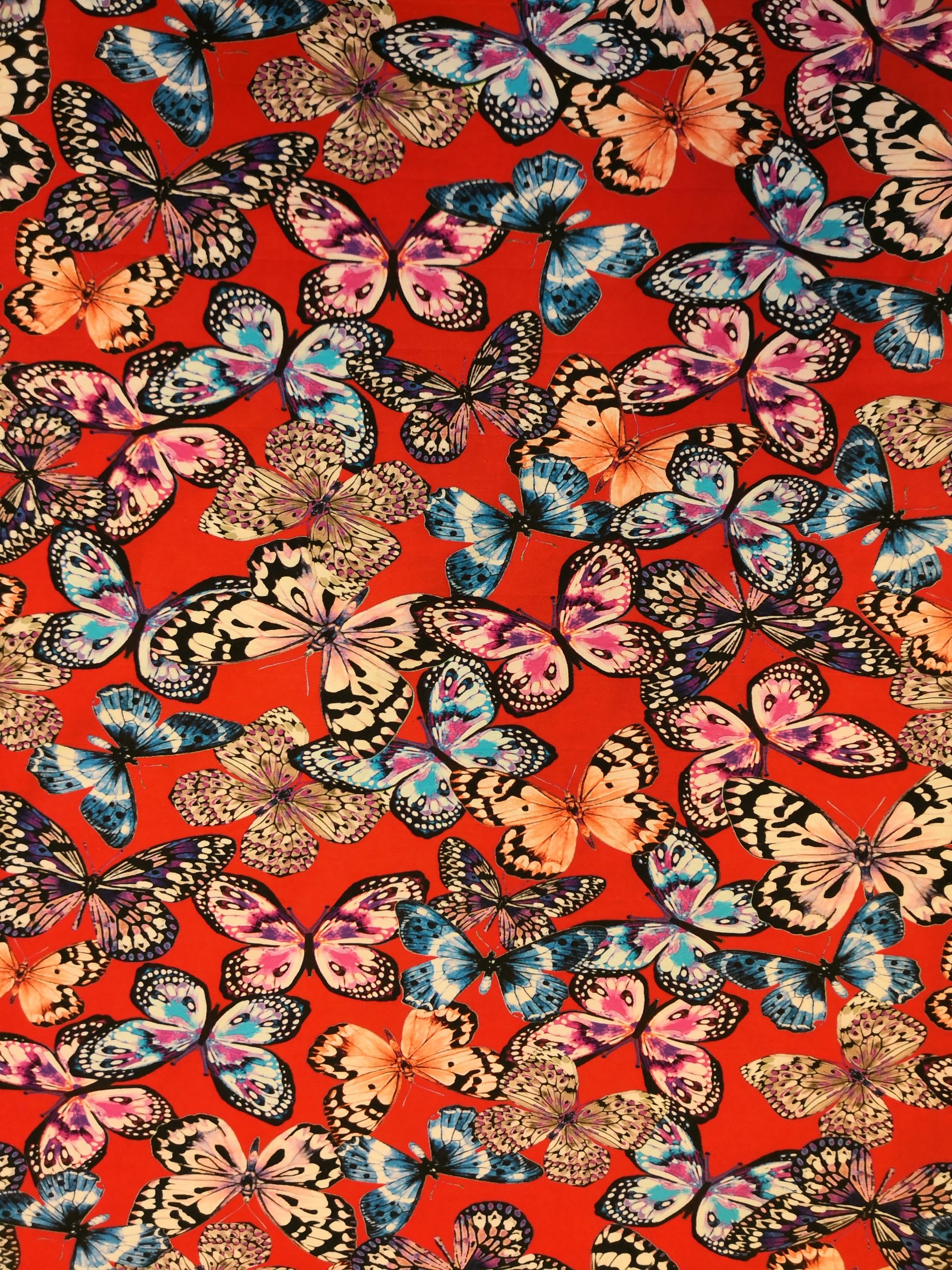 fjärilar på röd botten