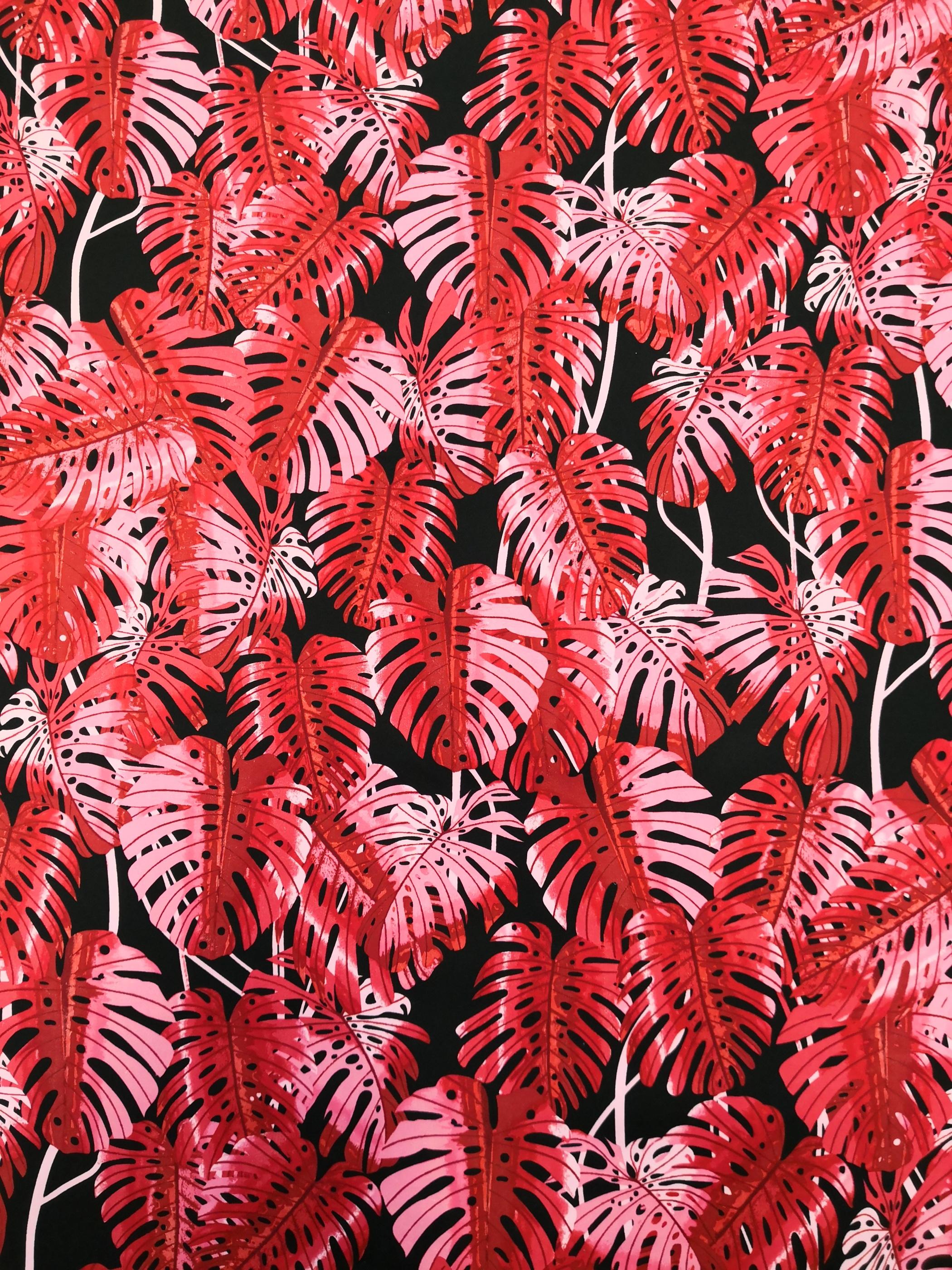 cericea blad på svart botten