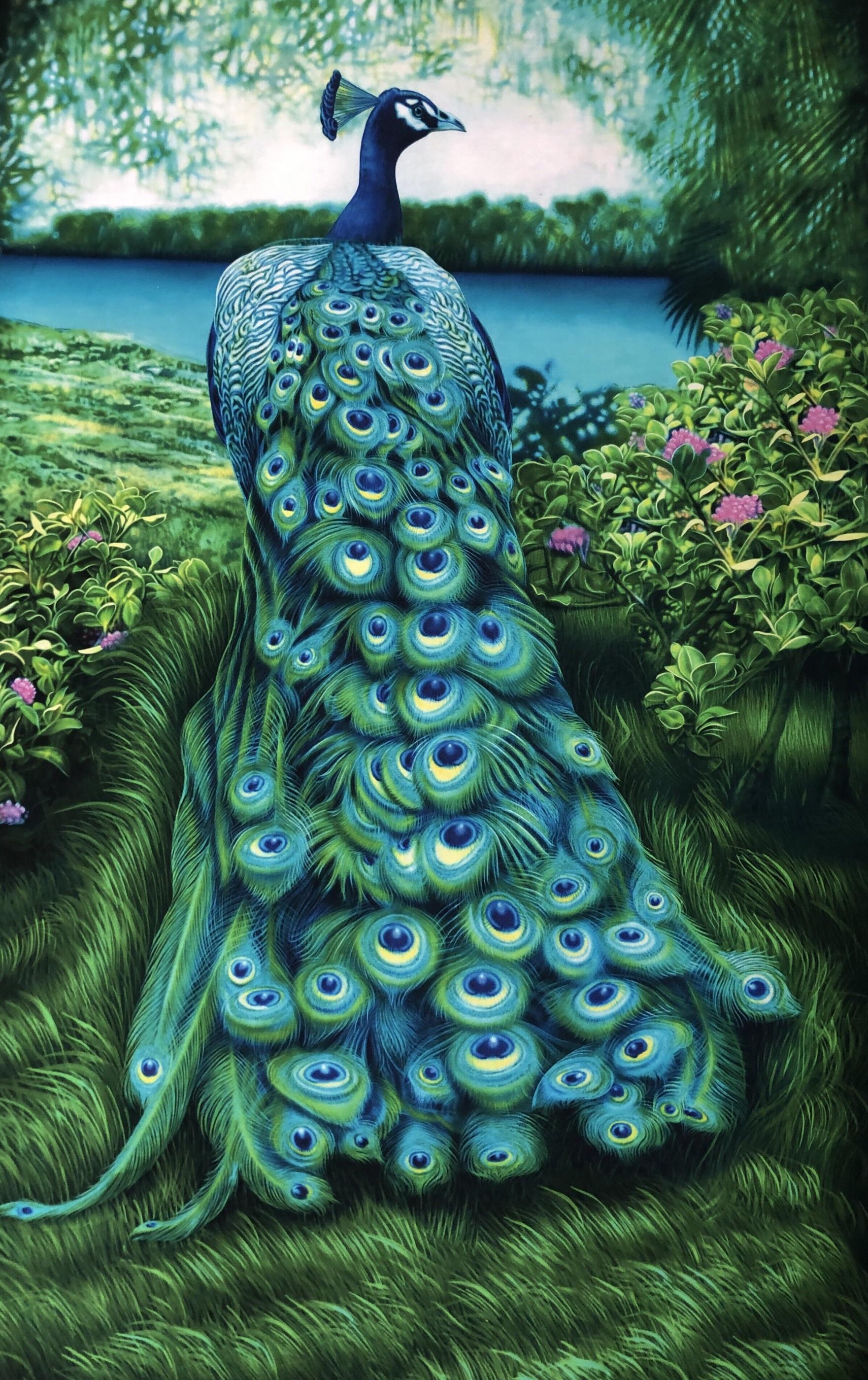 Magiskt herr påfågel blå grön rapport metervara Tyglust Laholm bomull