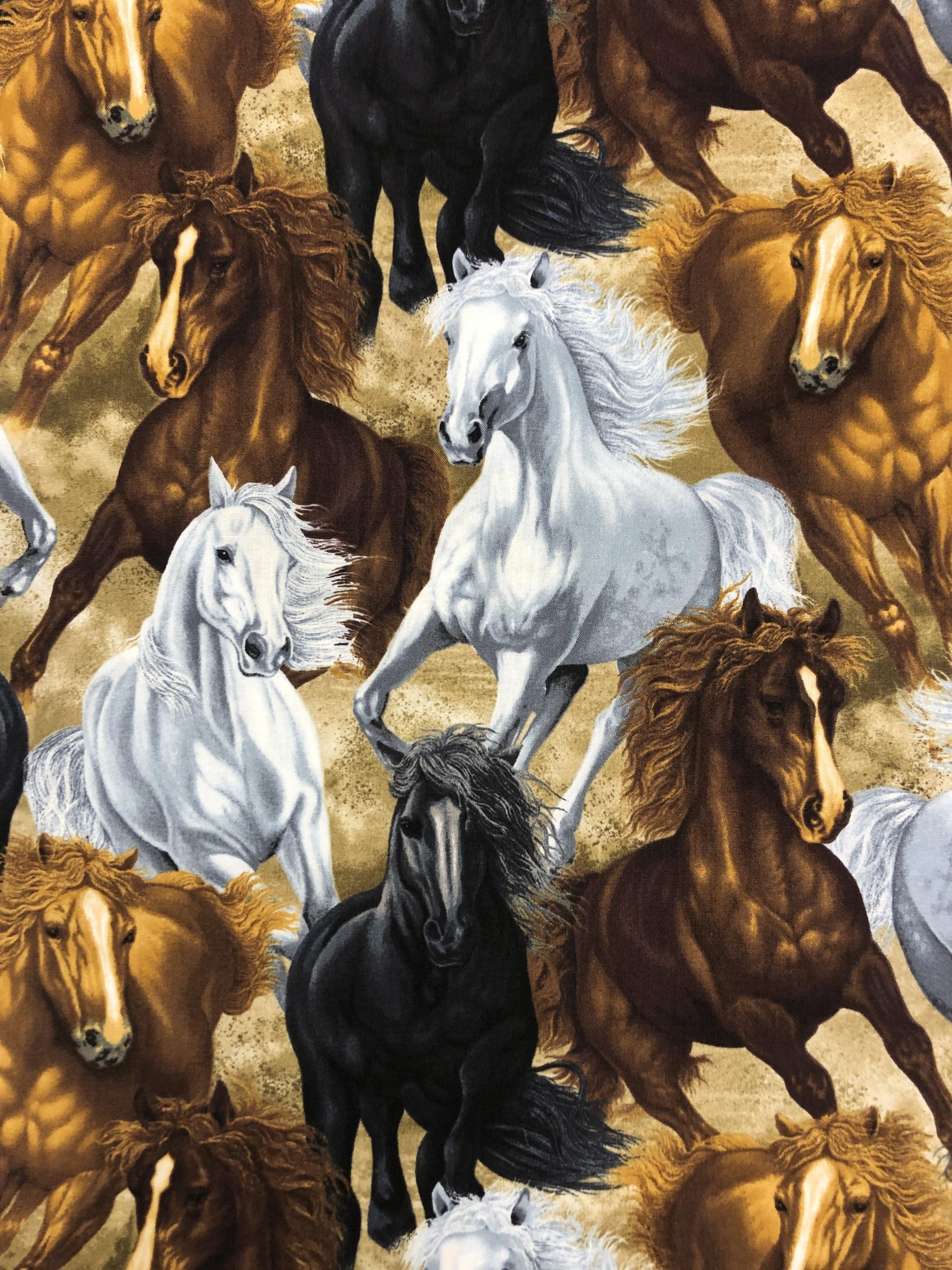 vildhästar hästar svart vit brun beige djur metervara tyglust laholm
