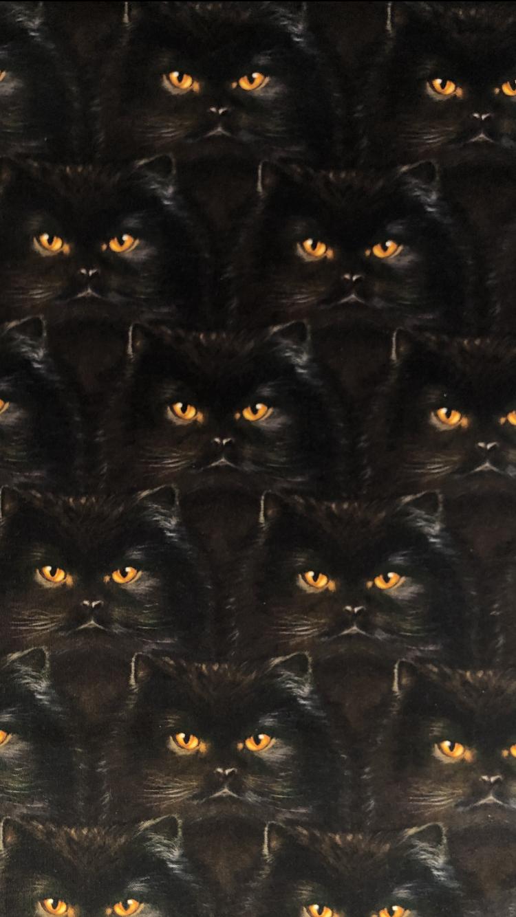 svart katt bomullsväv bomull metervara modetyg tyglust laholm