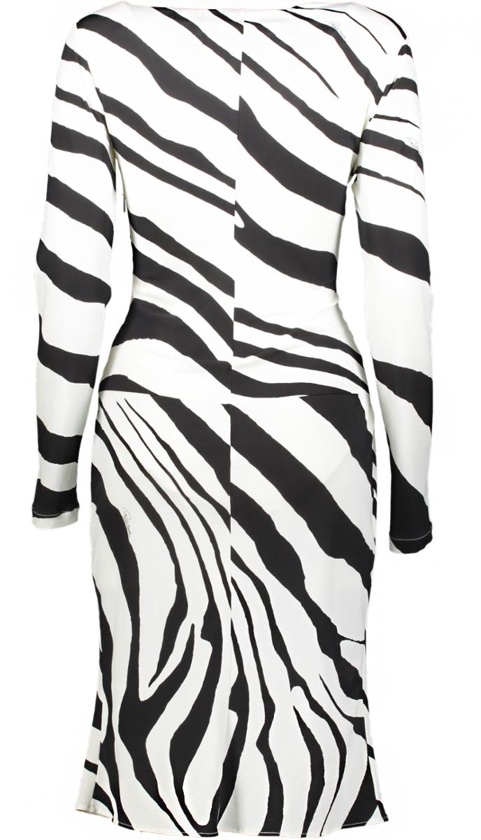 cavalli zebra back _Front_1200x800Fixed-JPG