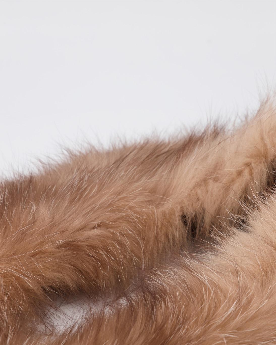 beige brown fox-Back-jpg-1