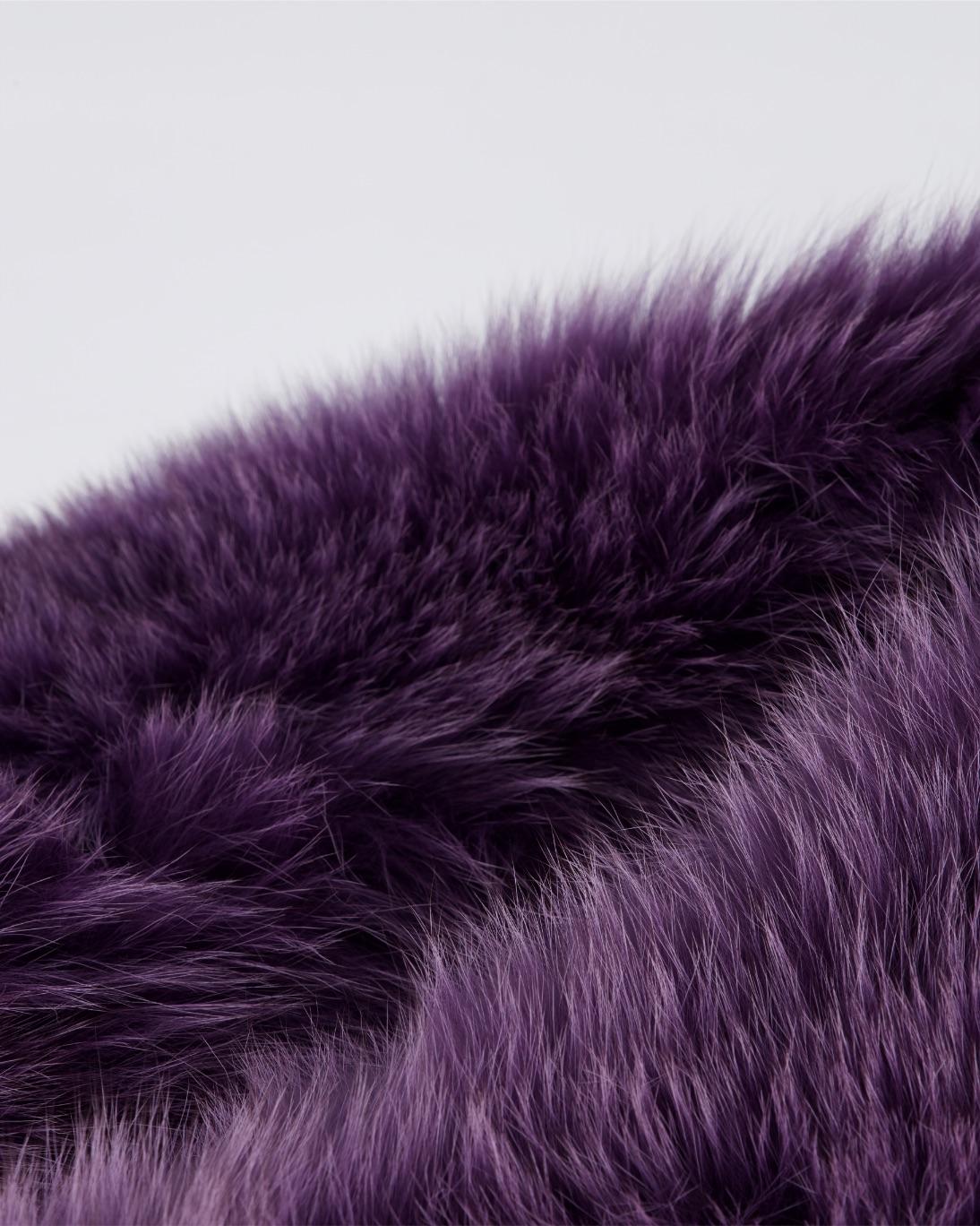 purple fox-Back-jpg-1