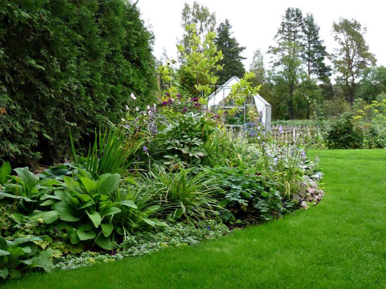 Mjuka former i trädgården