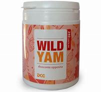 Wild Yam 240 kapslar -