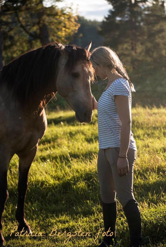 häst och människa