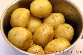 Färsk potatis/new potato 1 kg - New potato 1 kg