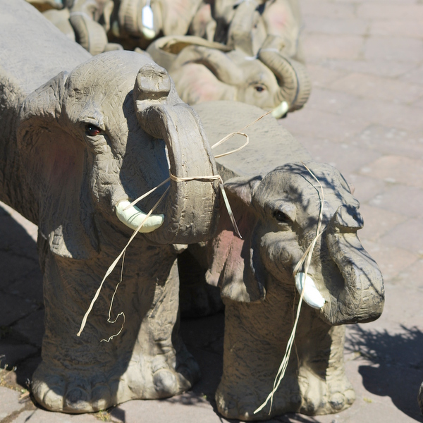 elefantträdgårdsbänk