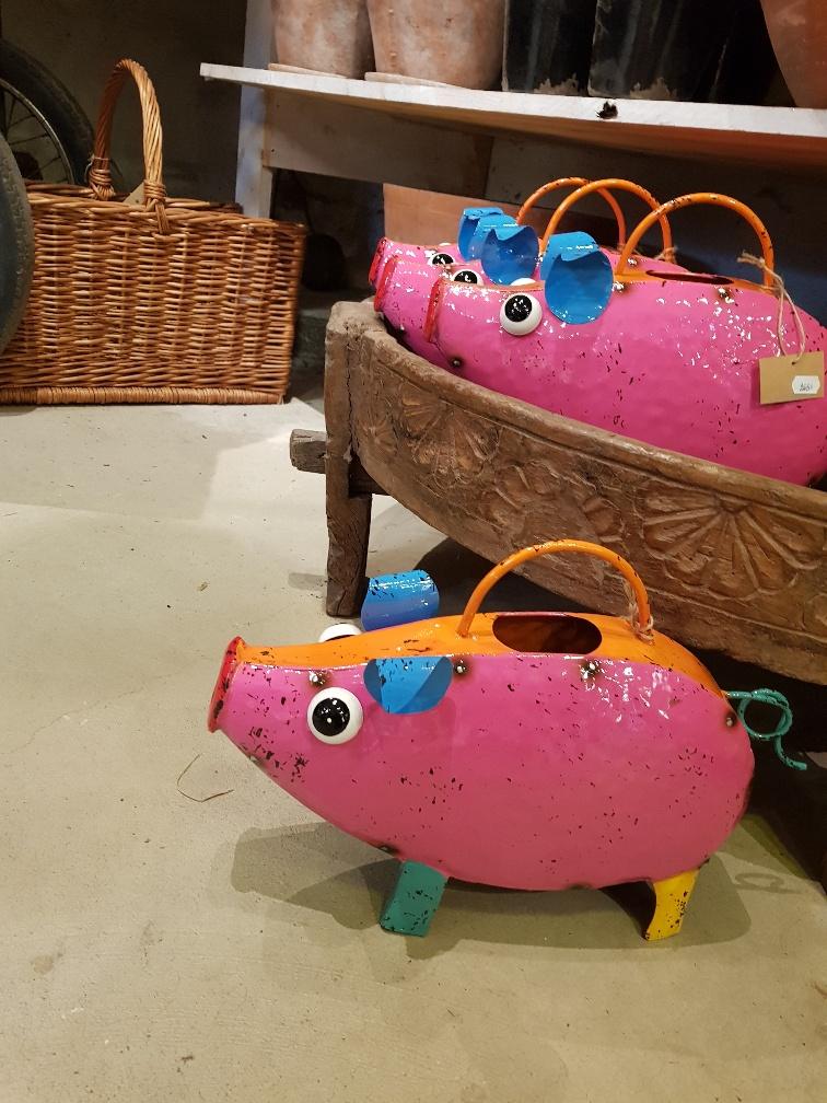 happy pig 2