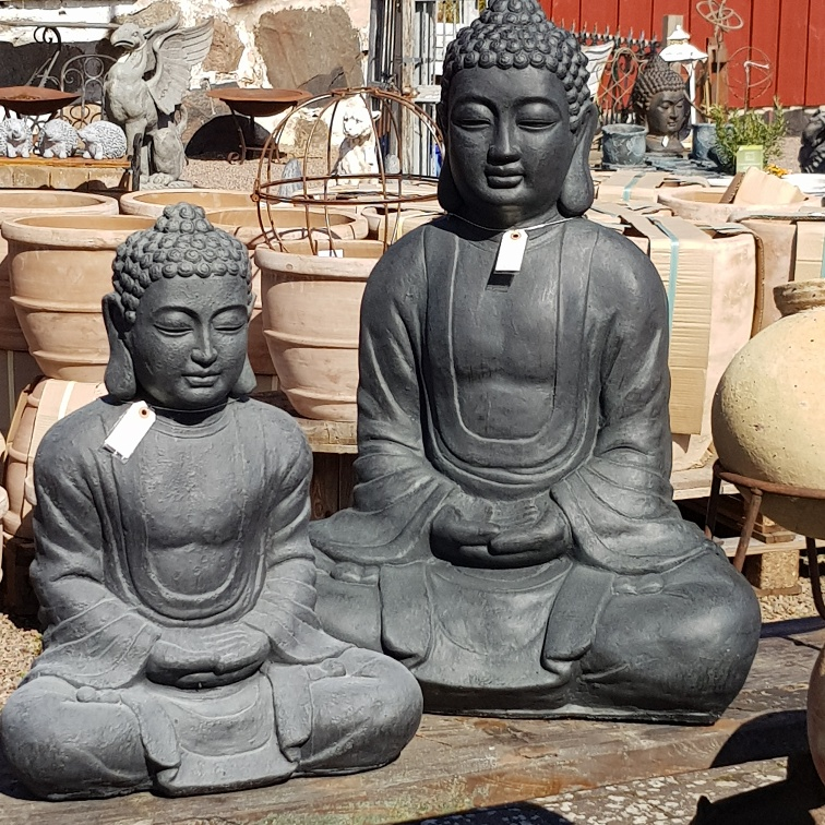 Stora Buddhor