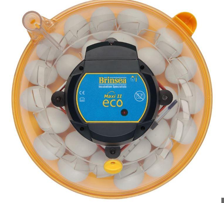 ÄggkläckningsmaskinMaxiEcotop