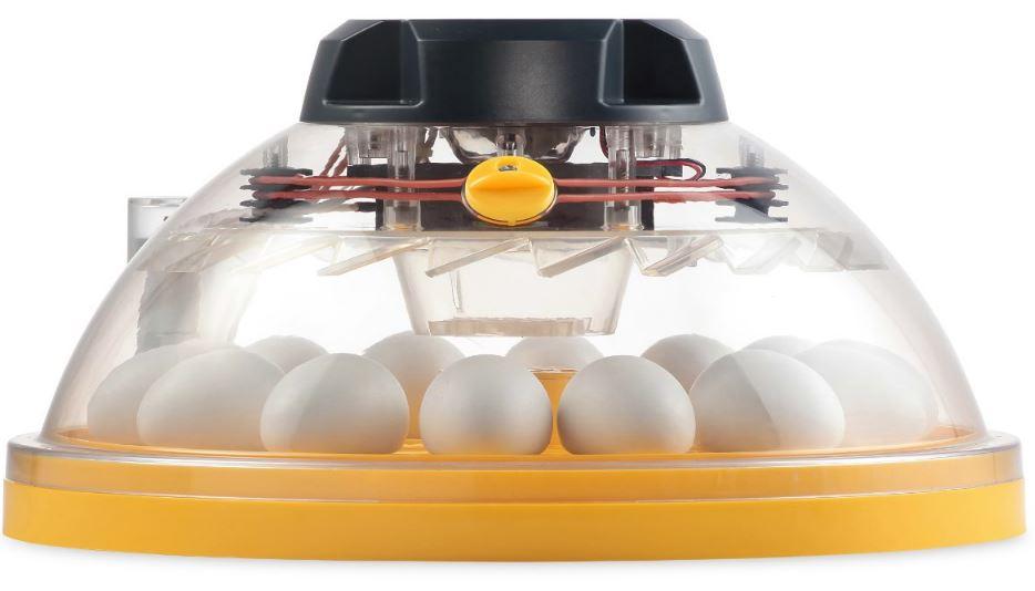 ÄggkläckningsmaskinMaxiAdvside