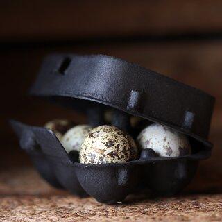 Äggkartonger för vaktel -