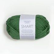 smart 8244