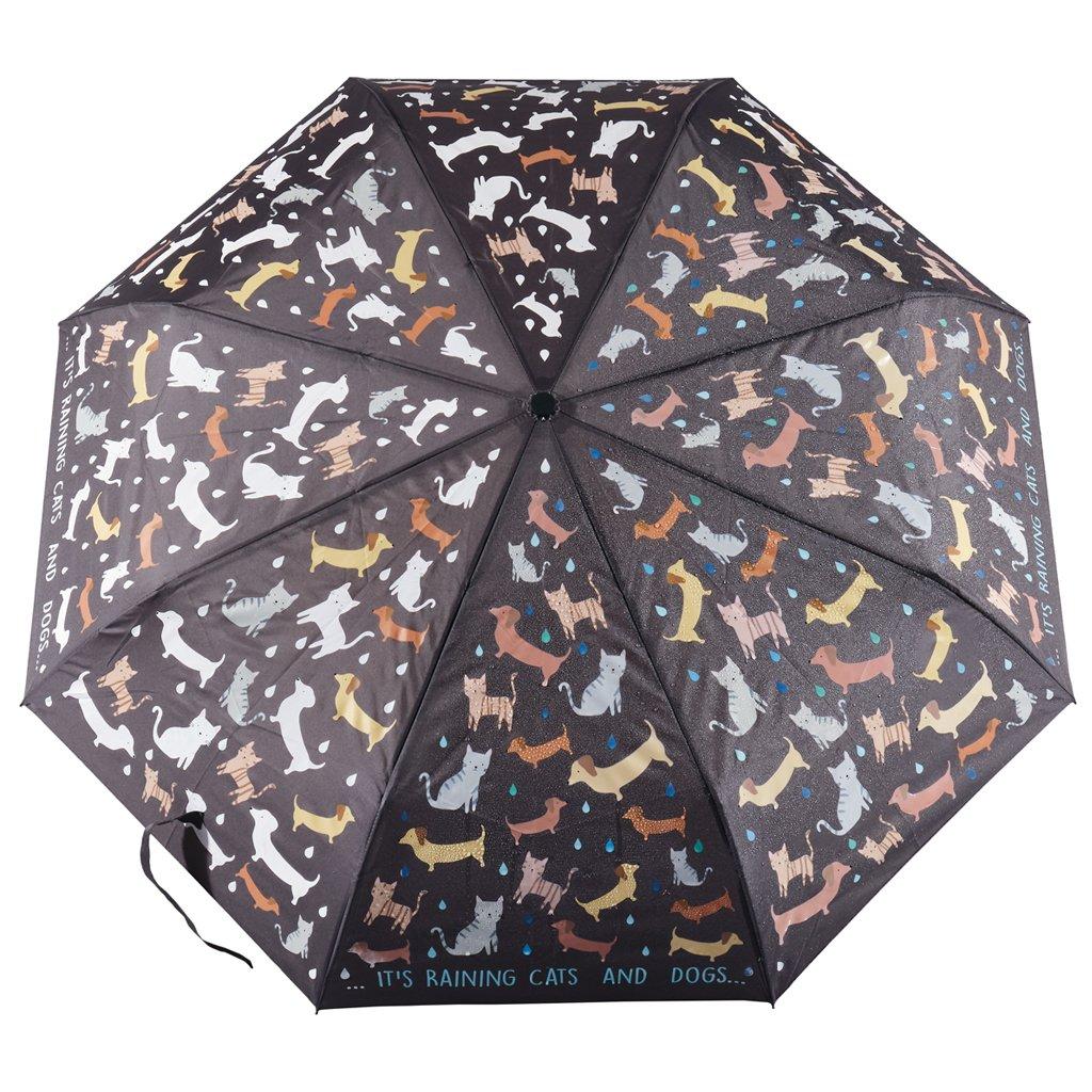Paraply färgskiftande katter och hundar