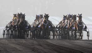 Hästarna får jobba hårt i backen på Vincennes