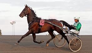 Sebastian K imponerande vinnare av Årjängs Sprinterlopp 2013..