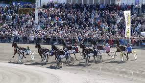 Magic Tonight vinner Elitloppet 2015!