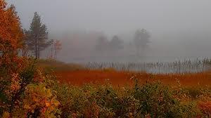 Hösten närmar sig med stormsteg!