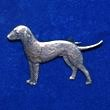 Bedlingtonterrier_s