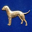 Bedlingtonterrier_g