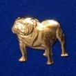 Bulldog Brosch Kenart
