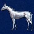 Häst Brosch Kenart