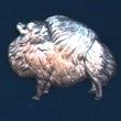 Pomeranian Brosch Kenart