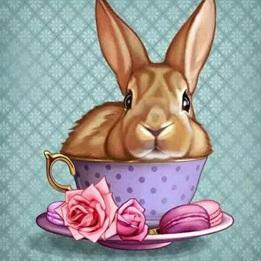 Kanin i kopp, fyrkant, 20x20cm - Kanin i kopp, fyrkant, 20x20cm
