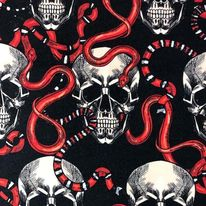 SNAKE AND SCULL - SNAKE AND SCULL