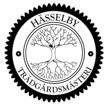 LogoHässelbyny kopia
