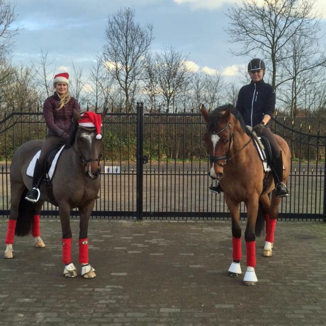 Härlig grön julhälsning från Holland 2015.  Sara & Eddie och Daniella & Florens