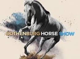Ser fram emot en trevlig helg 5-5/4 i Göteborg, med fina hästar och avkoppling :-)