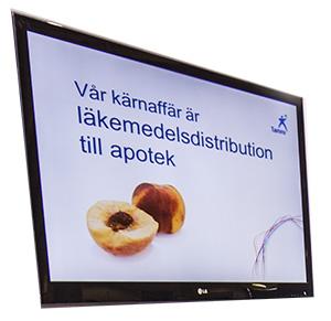 TV skärm 55