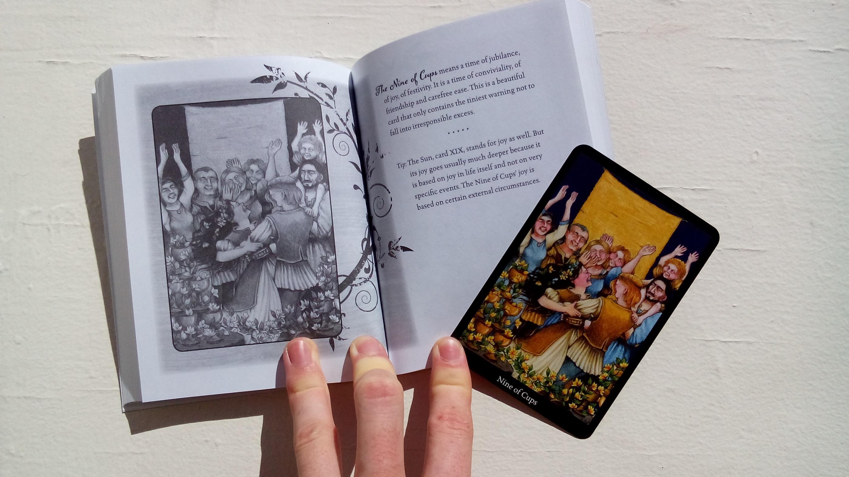 Anna K Tarot 9780738735726_book