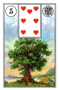 Piatnik Mlle Lenormand 194115 fortune telling cards 9001890194115-5