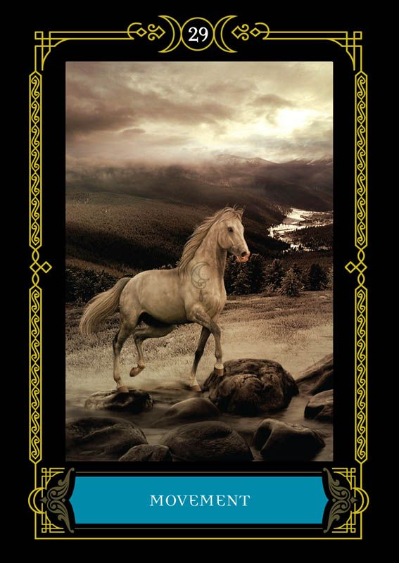 Wisdom-Of-House-Of-Night-Oracle-Cards-1