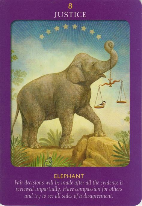 Animal Tarot 9781401951214_2