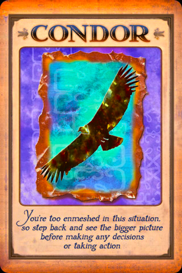 Messages from your animal spirit guides 9781401919863_2