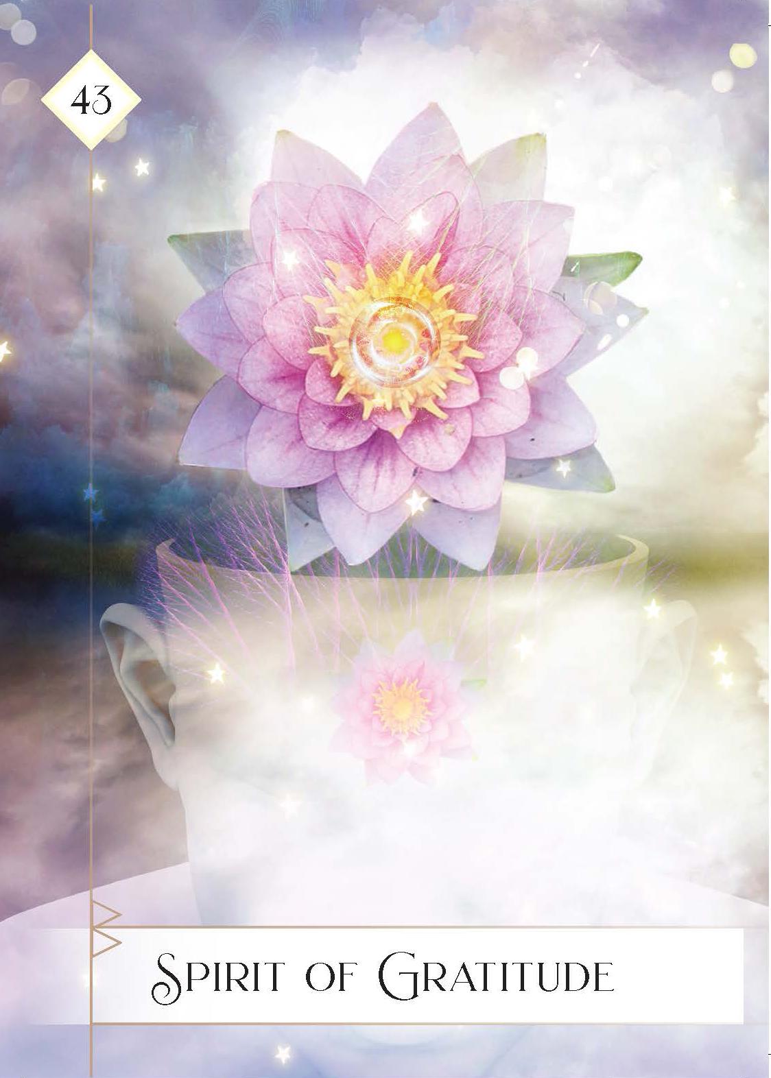 Oracle of the 7 energies_9781401956974_2