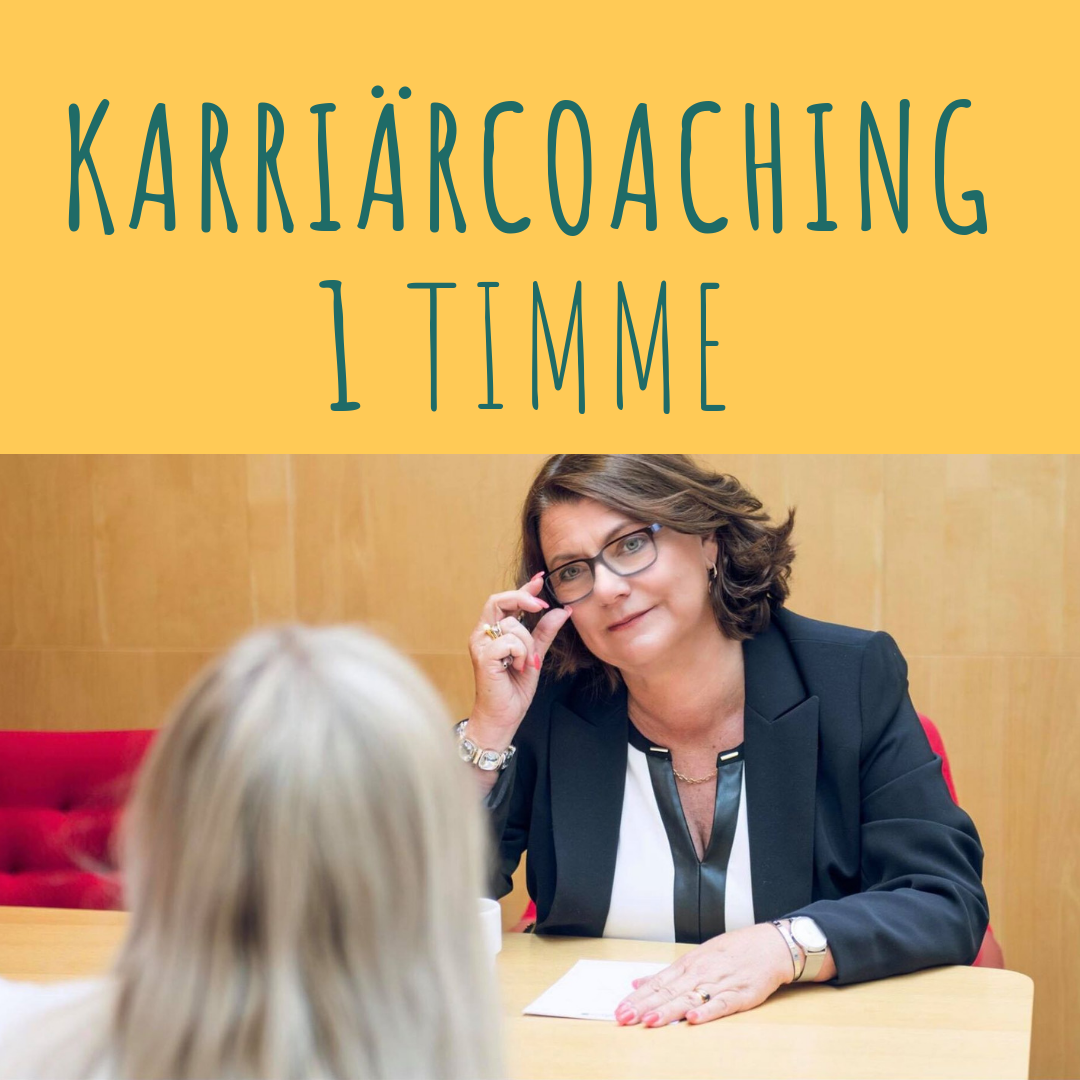Karriärcoaching 1 tim