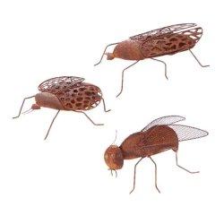 Insekter i rost - Fluga