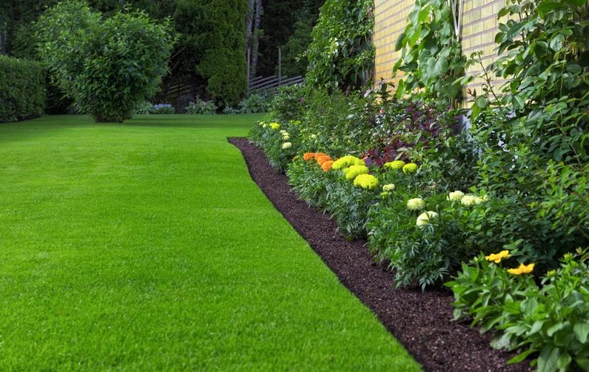 Jämn och vacker gräsmatta med kuskadressjord