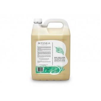 Botaniqua Basic Deep Clean 4 l