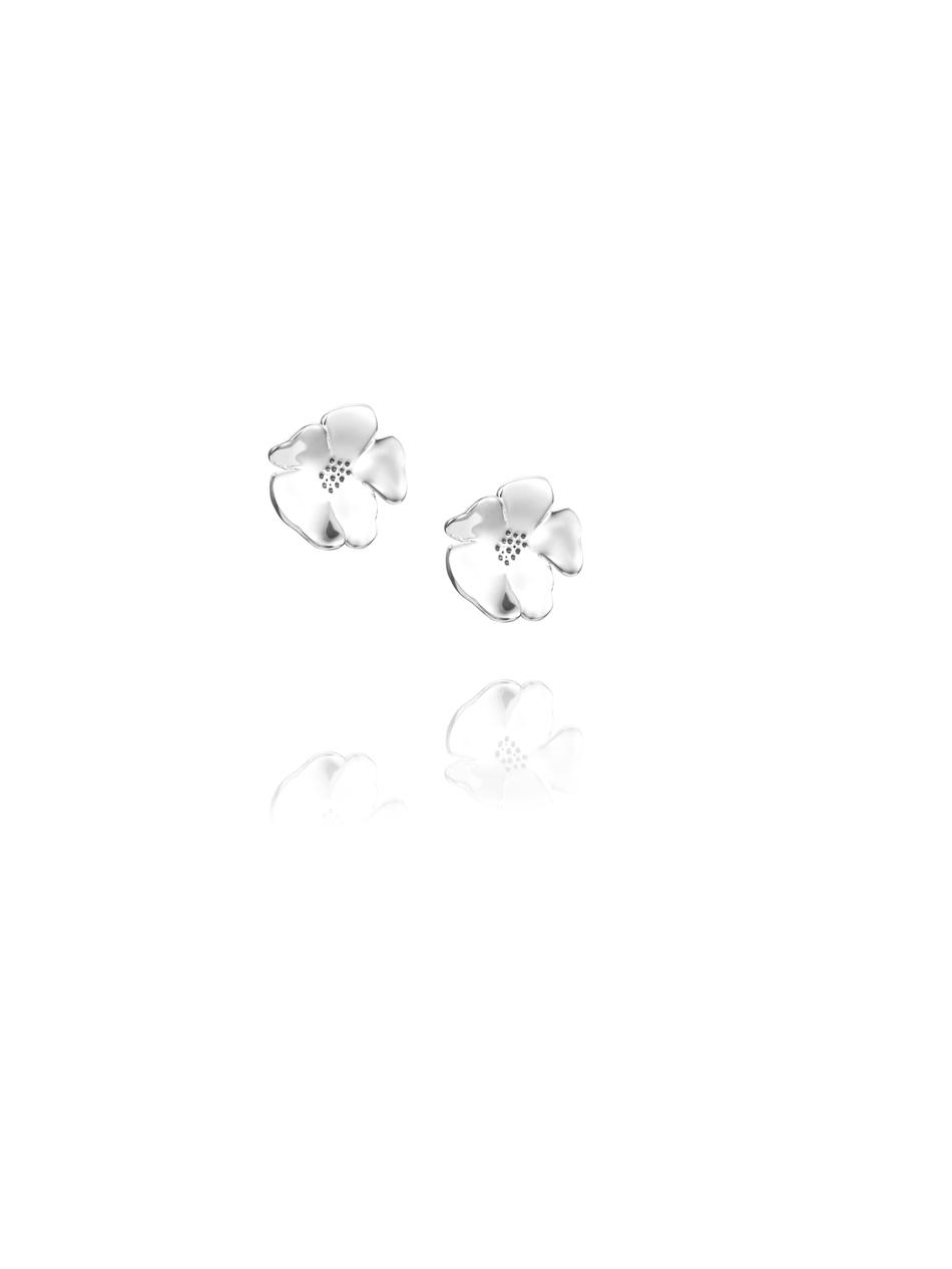 Violet Ear 12-100-01436(1)
