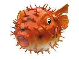 Sprutfisk Puffer -