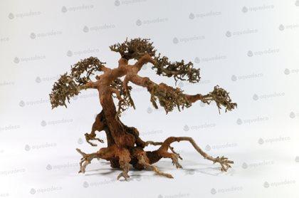 Aqua Bonsai träd