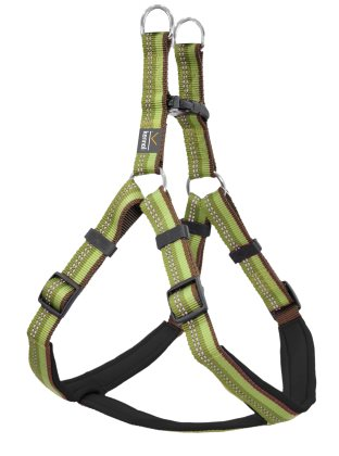 Dog Harness Step in Active grön