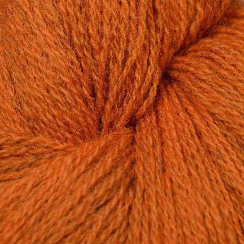 Duo550M-orange